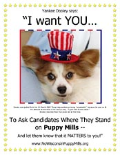 Dooley wants you to ask candidates where they stand on puppy mills and let them know that it matters to you.