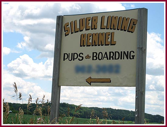 The sign for Silver Lining Kennels proclaims PUPS & Boarding.