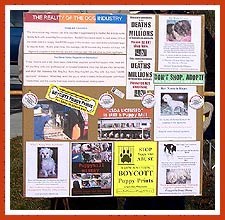 Informational sign from a recent petstore protest.